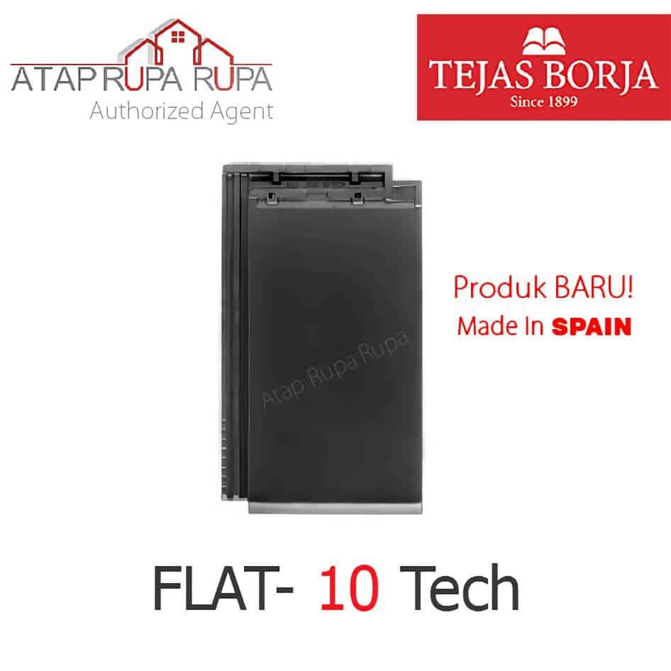 Tejas Borja 4